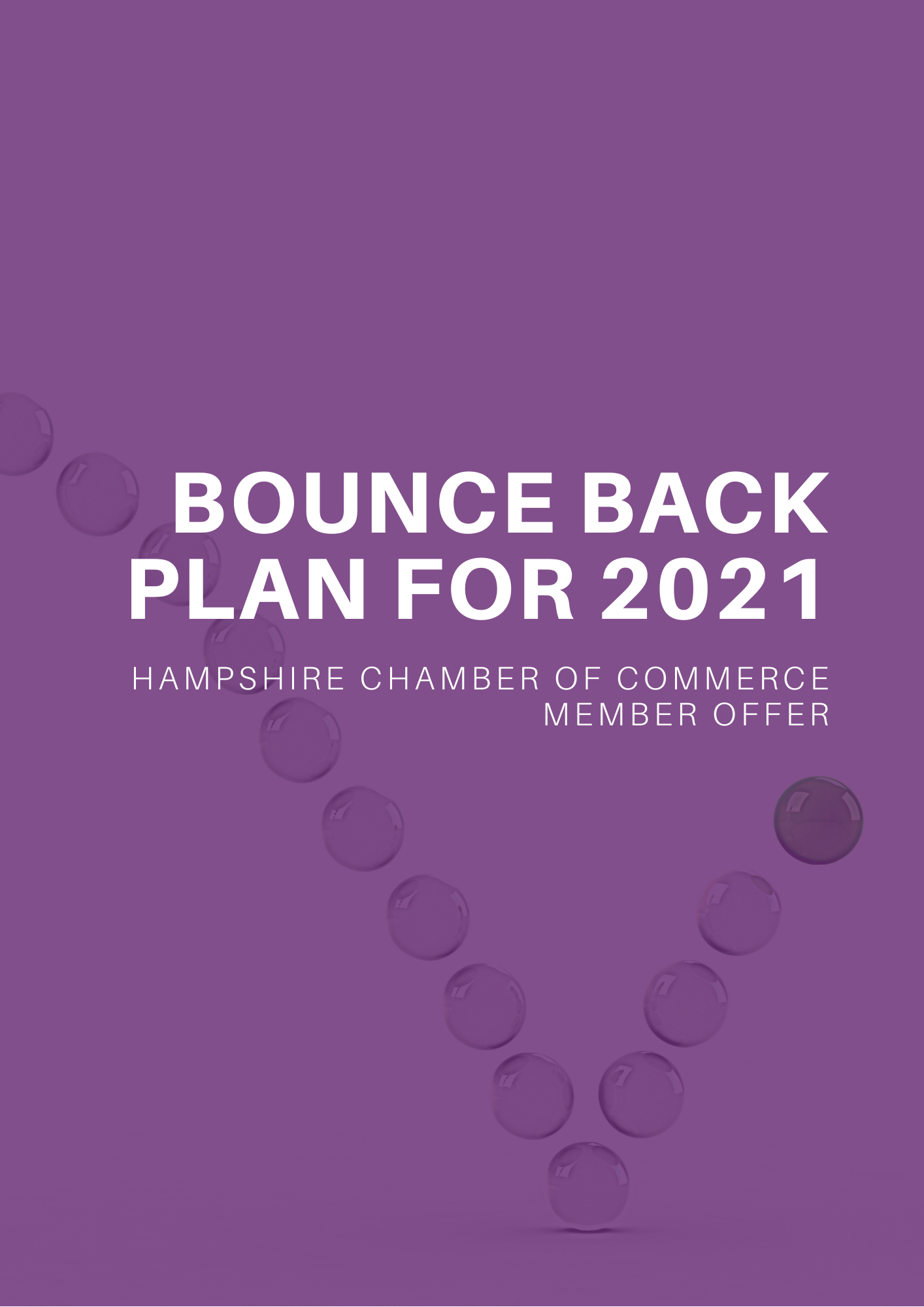 Bounce Back Plan for 2021