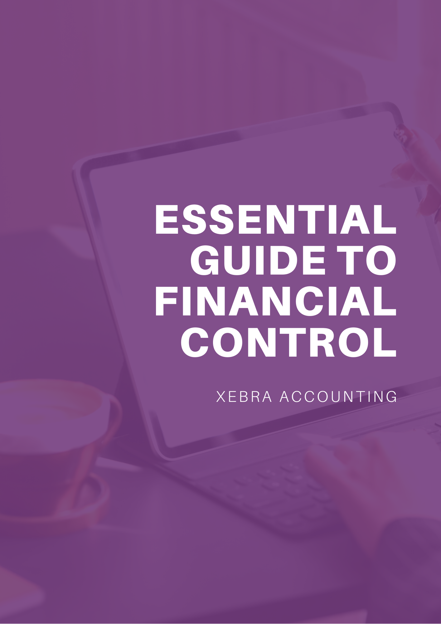 The Essential Guide to FInancial Control